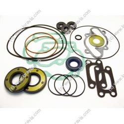 Engine gasket set 462