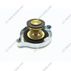 Water radiator cap 1.2 Bars
